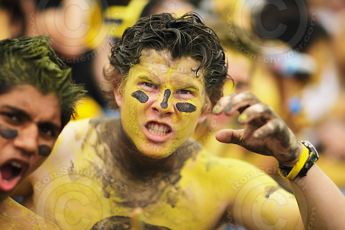 CFL football body and face painted Hamilton Tiger-Cats fan